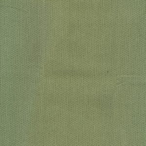 Hadleigh by Ginger Lily Studio and other tone on tone fabrics
